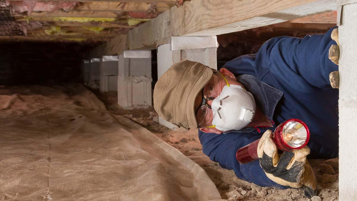 Pest control specialist inspecting under a home